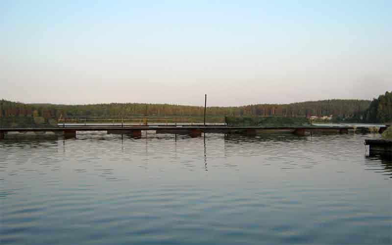 УрФО лидирует в России по площади рыбоводных участков