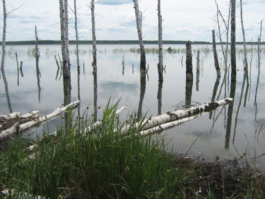 дербишева челябинская область рыбалка
