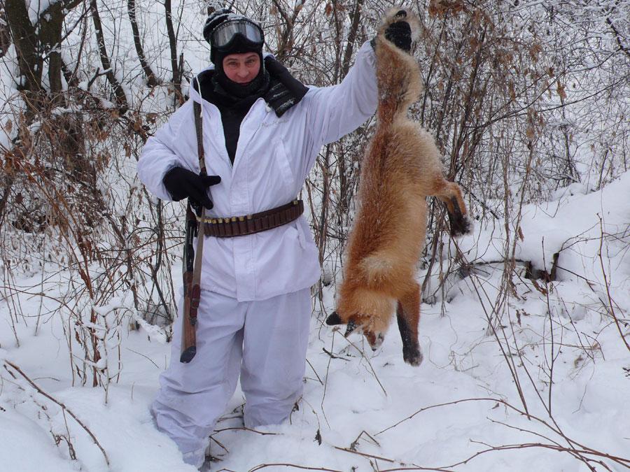 Сроки открытия охоты на лисицу 2017 в курской области Они