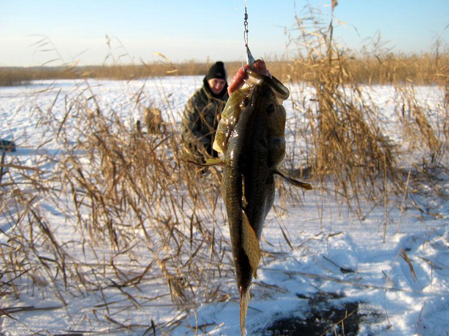 Озеро беликуль зимняя рыбалка