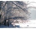 Зима на Большом Кисегаче (фото Жукова Игоря, Челябинск)