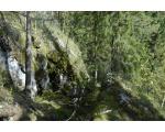 Памятник природы Шемахинское карстовое поле