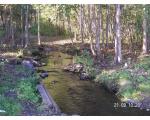 Природа в окрестностях Озерска
