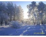 Зимний пейзаж в окрестностях Озерска