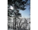 Озеро Увильды, февраль 2009 (фото Лидии Пасюковой, г. Челябинск)