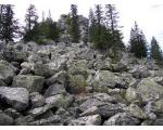 Гора Сука