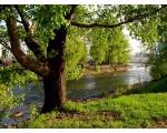 Река Сатка.