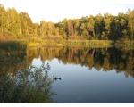 Небольшое болотце, восточный берег (фото Олега Куделенского, Челябинск)