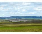 Природа Чесменского района