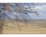 Агаповский район, поздняя осень в степи