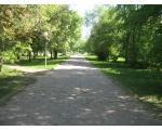 Центральный район. Аллея в парке на Алом поле