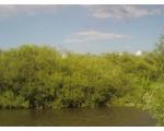 Река Уй. Берег (фото outdoors.ru)