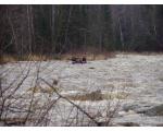 река Березяк весной