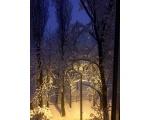 Зима в Краснодаре или чем «пахнет» Новый год
