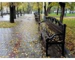 Осень в Краснодаре. Елена Шумилова